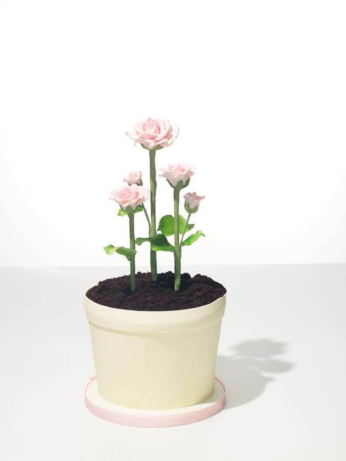 Flower Pot Cakes